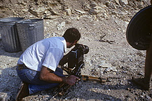 Kevin Flay, cameraman, filming Rattlesnakes fighting, Dallas, Texas, USA, April 1989  -  Rupert Barrington
