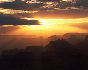 Looking west from Navajo Point at sunset, with Wooton's Throne, Angel's Gate, Isis, Shiva and Zoroaster Temples silhouetted against the light. Grand Canyon National Park, Arizona - Jack Dykinga
