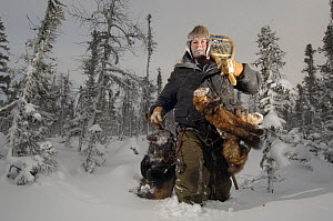 Trapper carrying his catch of one wolverine and four pine martens through the taiga of Manitoba, at -45 degrees C. Canada.  -  Laurent Geslin