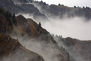Mist shrouds the Tian Shan (Heavenly Mountains) in Xinjiang Province, North-west China. September 2006  -  George Chan