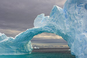 Arched iceberg floating off the western Antarctic peninsula, Southern Ocean - Steven Kazlowski