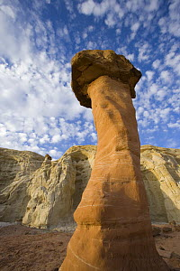 Toadstool Hoodoo in the Grandstaircase-Escalante National Monument, Utah, USA  -  Jeff Vanuga