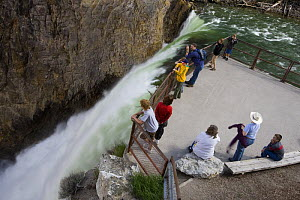People admiring scenery at Brink of the Lower Falls Trail and viewpoint, Grand Canyon of the Yellowstone river, Yellowstone National Park, Wyoming, USA  -  Jeff Vanuga