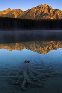 First light at Patricia Lake, Jasper National Park, Alberta, Canada - Adam Burton