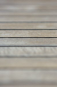 """Close up of SY """"Adele""""'s deck using a shallow depth of field setting  -  Rick Tomlinson"""