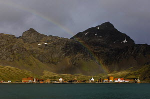 A rainbow arcs over the old whaling station of Grytviken in King Edward Cove, South Georgia, February 2007.  -  Rick Tomlinson
