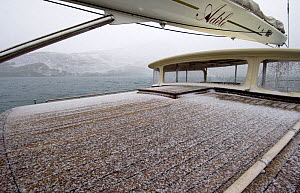 """Snow on the deck of SY """"Adele"""", 180 foot Hoek Design, anchored at Rosita Harbour, South Georgia, February 2007 Non editorial uses must be cleared individually.  -  Rick Tomlinson"""
