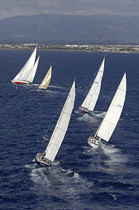 """SY """"Adele"""", 180 foot Hoek Design, at the Superyacht Cup Palma, October 2005  -  Rick Tomlinson"""
