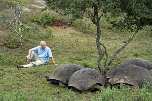 Sir David Attenborough sitting with group of Giant Tortoises (Geochelone elephantopus) Galapagos. Filmed for BBC television series ^Life in Cold Blood^, May 2006  -  Miles Barton