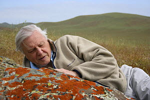 "Sir David Attenborough with side blotched lizard (Uta stansburiana) on rock, Santa Nella, California, USA. For BBC television series ""Life in Cold Blood"", April 2006  -  Miles Barton"
