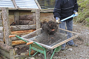 Gardener sieving raw compost through seive, UK, model released  -  Dave Bevan