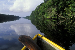 View of river from boat, Tortuguero NP, Costa Rica  -  Jouan & Rius