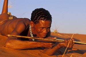 Bushman San lying on sand dune with traditional bow, Kalahari desert, Botswana  -  Jouan & Rius