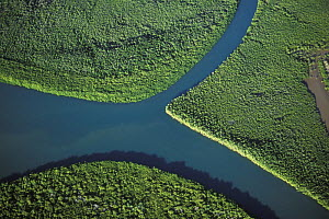 Aerial view of river and mangrove forest, West coast, Madagascar  -  Jouan & Rius