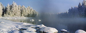 Winter landscape with lake, snow and mist, February, Northern Finland 2007  -  Jorma Luhta