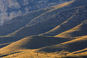 Guadalupe Mountains National Park, Texas, USA  -  Ingo Arndt