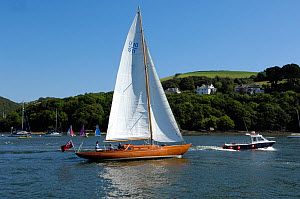Bermudan Sloop sailing along the River Dart near Dartmouth, Devon.  -  Rob Cousins
