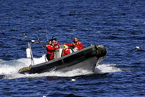Greenpeace activists in an inflatable RIB in the North Sea, May 2007  -  Philip Stephen