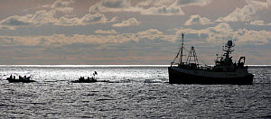 Greenpeace activists in inflatable RIBs hamper fishing operations in the North Sea, May 2007  -  Philip Stephen