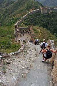 A group of hikers descend steep steps along a section of the Great Wall of China, Hebei Province, September 2007  -  Philip Stephen