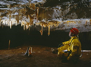 Potholer in cave admiring early formation of stalactites, Cantabria, Spain  -  Inaki Relanzon