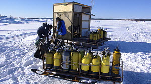 Oxygen cylinders for divers ice diving under ice in the White Sea, Northern Russia  -  Dan Burton