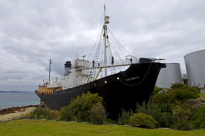 An exhibit at Whale World - a whaling ship, complete with a harpoon on the bow, at an old whaling station,  Albany, Western Australia  -  Steven David Miller