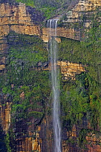 Waterfall viewed from Govetts Leap Lookout, Blue Mountains National Park (Blackheath), New South Wales, Australia. Property Released  -  Steven David Miller