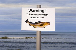 Spoof warning sign about scarcity of cod in the sea, Aberdeenshire, Scotland, UK - Niall Benvie