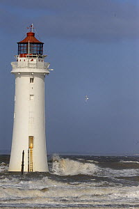 Perch Rock Lighthouse in a storm, Wirral, Merseyside, UK, March 2008  -  Graham Eaton