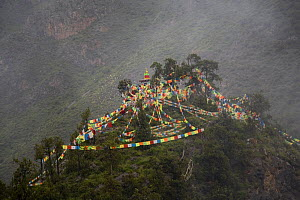Holy hill near Dargye, Sichuan Province, China, Tibet. Part of the Biodiversity hotspot �Southeast China mountains� - Dr. Axel Gebauer