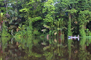 Tourists travelling by boat on river through rainforest, Tortuguero National Park, Costa Rica  -  Edwin Giesbers