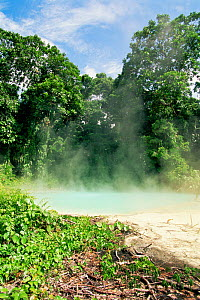 Steam rising from thermal springs, New Britain, Bismarck Archipelgo, Papua New Guinea  -  Doug Perrine