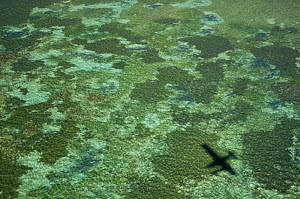 Aerial view of the shallow tropical sea at Nosy Be with shadow of aeroplane, North Madagascar. - Inaki Relanzon