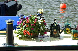 Floral decoration on top of narrow boat, Bristol Floating Harbour, UK - Rob Cousins