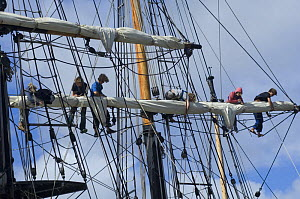 """Crew of the """"Earl of Pembroke"""" tall ship working in rigging during Bristol Harbour Festival on Bristol's floating harbour, August 2008  -  Rob Cousins"""
