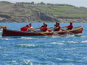 "Roseland men's crew racing ""Polvarth"" at the 19th World Pilot Gig Championships, Isles of Scilly, May 2008 - Adam White"