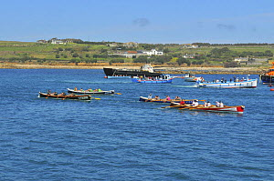 Crews racing in the final heats of the 19th World Pilot Gig Championships, Isles of Scilly, May 2008 - Adam White