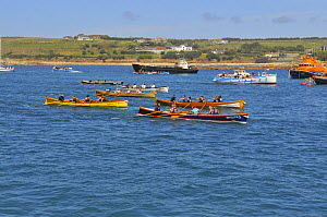 Ladies crews racing in the final heats of the 19th World Pilot Gig Championships, Isles of Scilly, May 2008 - Adam White