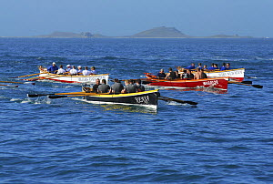 "Men's crews racing in the final heat of the 19th World Pilot Gig Championships, Isles of Scilly, May 2008. Mount's Bay in ""Kensa"" are leading. - Adam White"