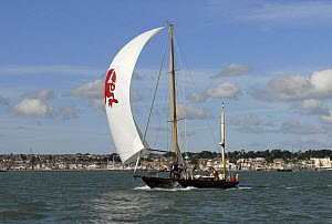 """Infanta"" under sail during Round the Island Race, The British Classic Yacht Club Regatta, Cowes Classic Week, July 2008  -  Rick Tomlinson"