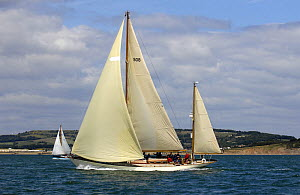 """Lutine"" under sail during Round the Island Race, The British Classic Yacht Club Regatta, Cowes Classic Week, July 2008  -  Rick Tomlinson"