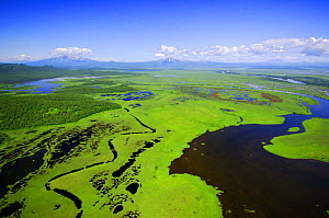 Aerial view of the Zhupanov river and surrounding wetlands just south of the Kronotsky Zapovednik, Kamchatka, Far East Russia  -  Igor Shpilenok