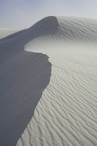 Ripples and ridges in the sands of White Sands National Park, Chihuahuan Desert, New Mexico, USA - Thomas Lazar