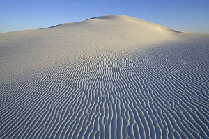 Ripples in white sand running down side of large rounded dune, White Sands National Park, Chihuahuan Desert, New Mexico, USA - Thomas Lazar