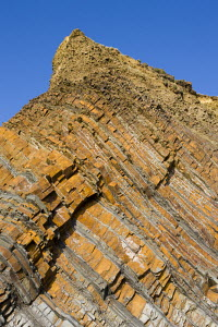 Layered rocks in the cliffs at Sandymouth, North Cornwall, UK  -  Adam Burton