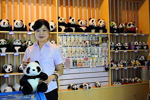 Vendor at the gift shop of the Chengdu Research Base of Giant Panda Breeding and Conservation - Eric Baccega