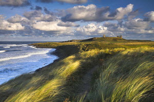 Blustery afternoon along coast, Dunstanburgh, Northumberland, England  -  Adam Burton