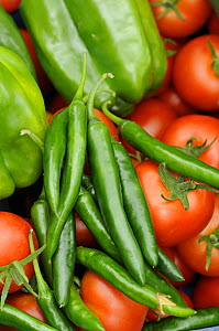 Close up shot of home grown greenhouse harvest of Sweet peppers, chilli peppers and tomatoes, UK, August - Gary K. Smith
