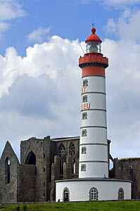 The Pointe Saint-Mathieu with its ruined abbey and lighthouse, Brittany, France. May 2008.  -  Philippe Clement